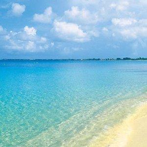 包含机票 两人同行仅1158欧起aida邮轮 14天行程 在加勒比海逐浪观涛