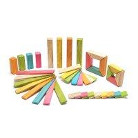 tegu 40 片木质磁力玩具