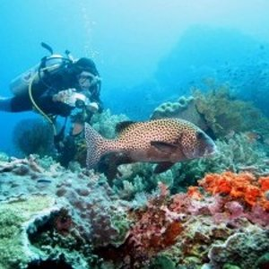 潜水胜地,冲浪天堂往返巴厘岛航班低至€478,杜塞尔多夫出发,包含行李