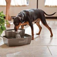 PetSafe 宠物饮水机