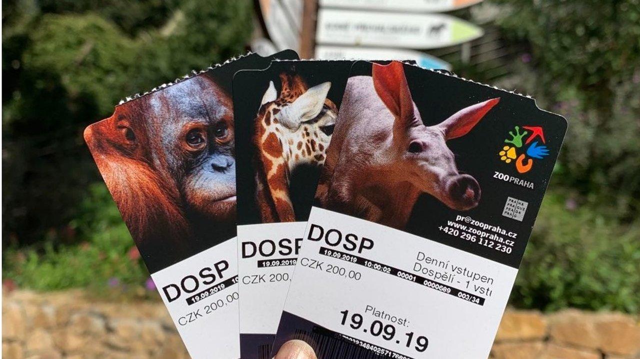 德国动物园Top10,看看你的城市有没有入选!去动物园打卡吧,可爱小动物治愈你!