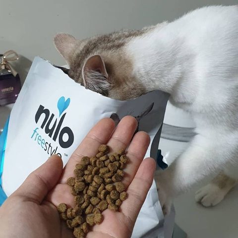 5% OffNulo Selected Pet Food on Sale
