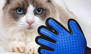 $1.99 (原价$4.99) 家有萌宠必备白菜价:Live Well Pets 撸猫撸狗硅胶手套   一直撸一直爽
