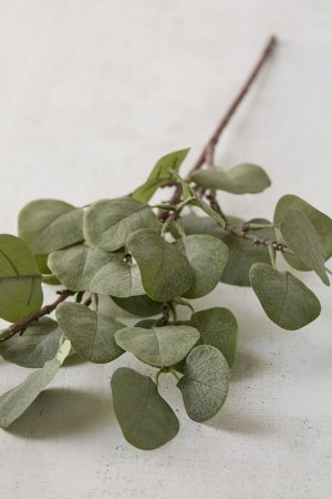 Urban Outfitters Eucalyptus Faux Plant