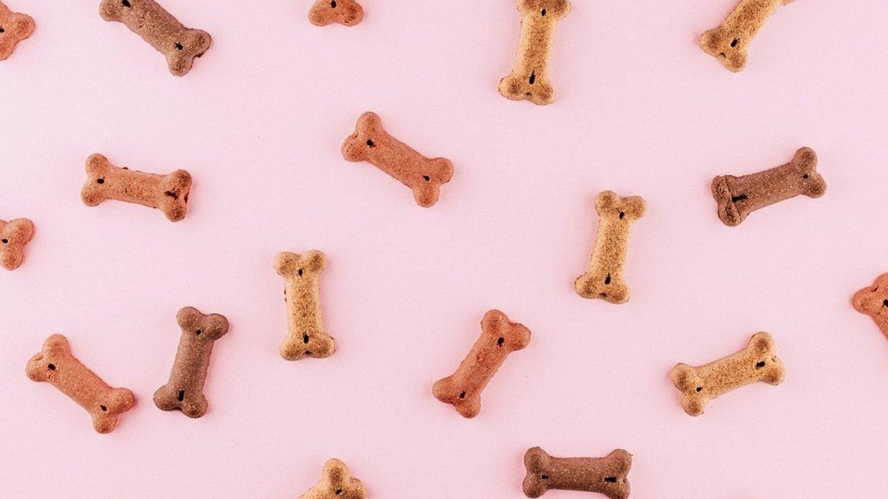 自制宠物零食 | 宠物零食怎么做?宠物零食制作方法分享