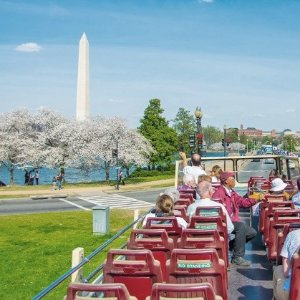 As Low as $44.50Sightseeing Bus Tour of Washington D.C. with Wax Museum Visit