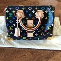 Louis Vuitton speedy 35 斜挎包