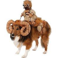 Rubie's Costume Company 狗狗服饰