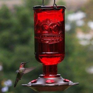 $8.32More Birds 蜂鸟喂食器 观察蜂鸟好机会