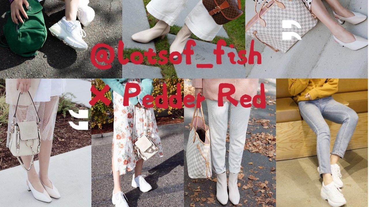 站在白色里,做几个彩色的梦   Pedder Red众测报告