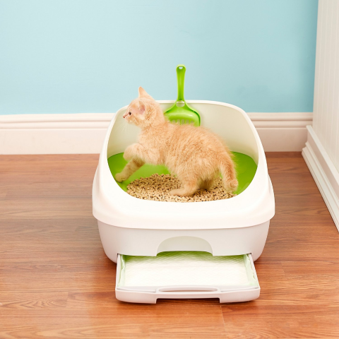 Up to 37% OffPurina Tidy Cats Breeze Cat Products on Sale