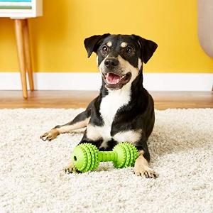 $2.34Petmate JW Pet Company Chompion Dog Toy