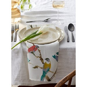 春季鸟图形餐巾