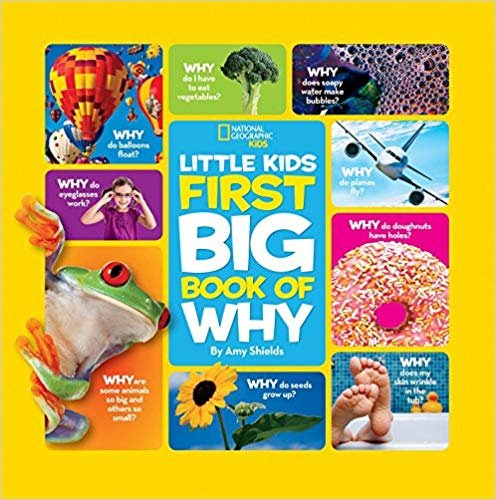 童书 Little Kids First Big Book of Why (Little Kids First Big Books)