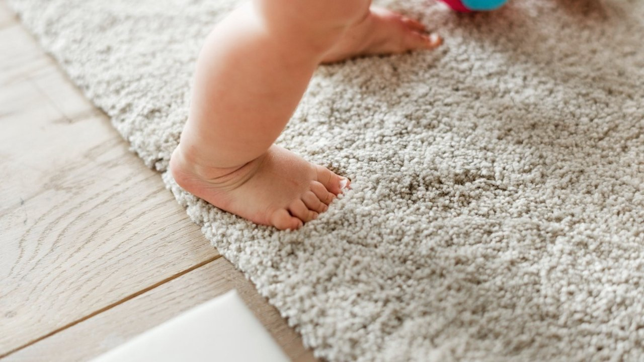 还你一个一尘不染的家 | 地毯清洁和家居清洁好物推荐