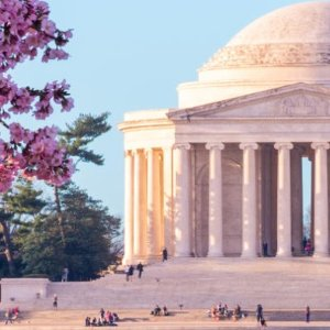 $39起 较全价票立省47%Go City Card 华盛顿特区游览通票好价 樱花季必备