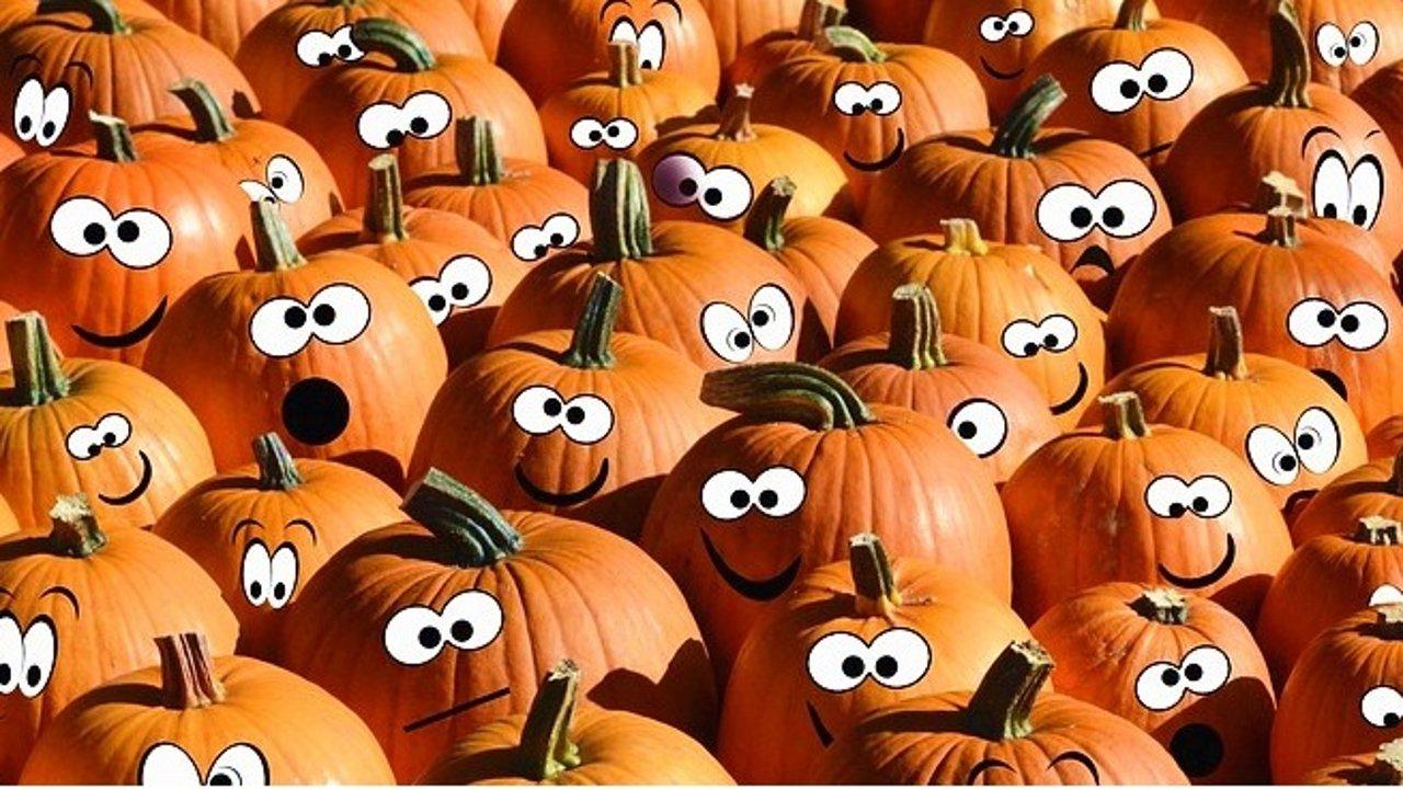 十月南瓜季,这17种南瓜的花式吃法你掌握了吗?!(附超全食谱)