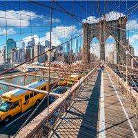 <7日>美东经典:纽约+费城+华盛顿+尼亚加拉大瀑布+纽约经典市区游+华盛顿历史游+哈佛麻省普林斯顿三大名校游览+阿米什人村庄