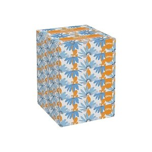 Shop Staples for Kleenex® 2-Ply Facial Tissue 125 Tissues/Box 12/Case (03076)