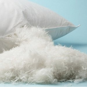 $39 (原价$179.95)惬意好眠FeatherLite 双人羽毛舒适枕