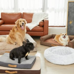As low as $26.99Lifease Memory Foam Platform Dog Beds on sale