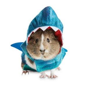 BootiqueShrunken Shark Small Animal Costume, Medium | Petco