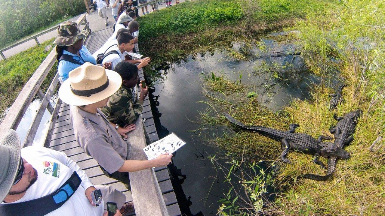 大沼泽国家公园出行指南┃概览、交通、景点、线路全面包办!