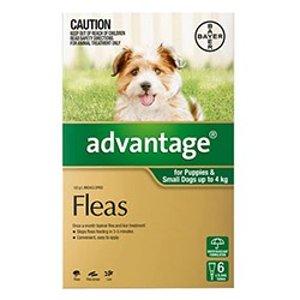 Advantagefor Dogs : BuyFlea Treatment For Dog Online