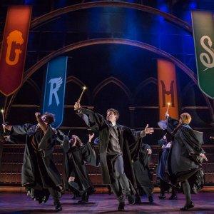 """$102起  被誉为""""史上最棒的戏剧""""纽约百老汇《哈利·波特与被诅咒的孩子》舞台剧门票"""