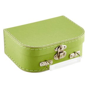 Bigso Lime Mini Stockholm Suitcase | The Container Store