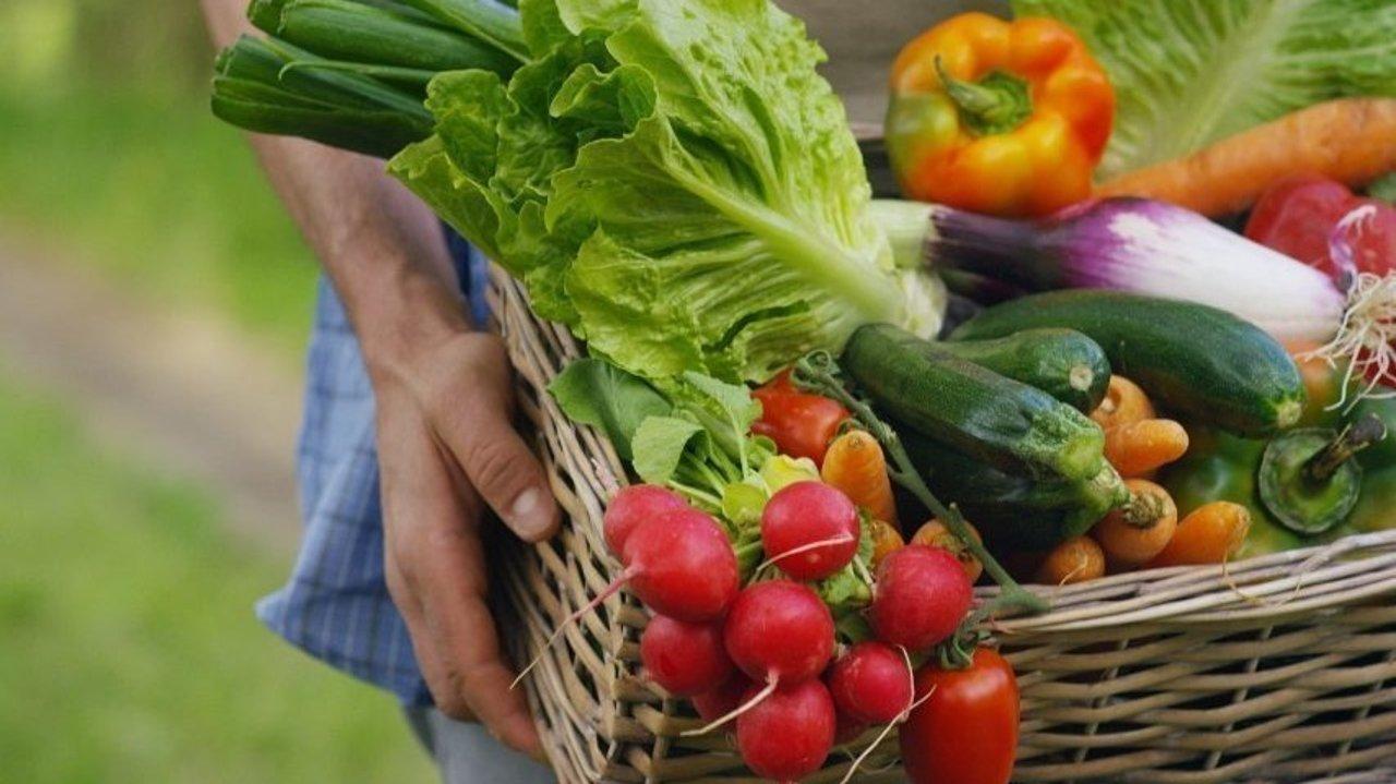 超市缺货的情况下,在哪里还可以找到送货上门的服务 | 肉、鸡蛋、牛奶、新鲜蔬果等