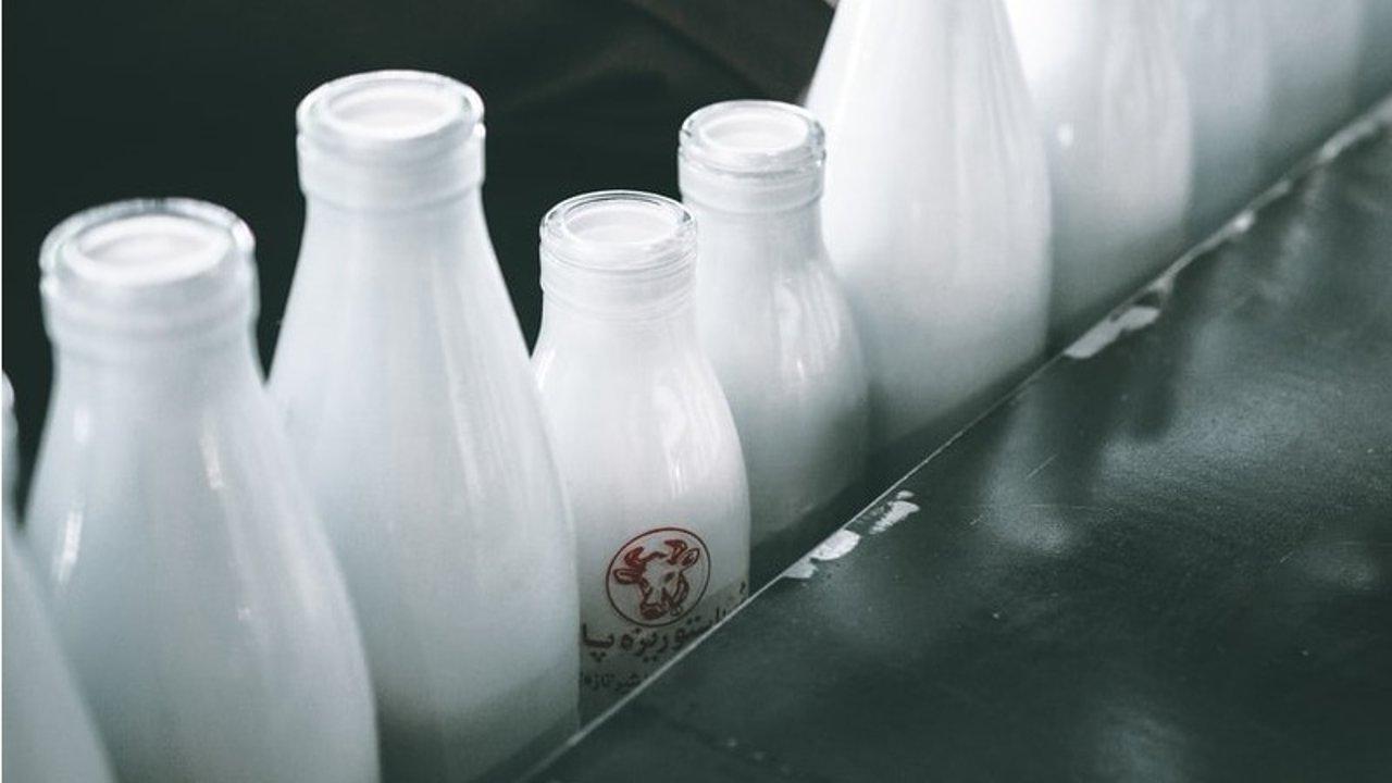 牛奶的千变万化 | 牛奶变身奶酪、黄油、奶油,制作方式大解锁!
