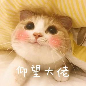 免费健康评估 + 150g猫粮限今天:PURINE 21天关爱猫猫计划