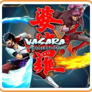 $4.99VASARA Collection (Nintendo Switch Digital Download)