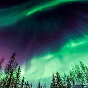 $692起 4次极光观测+穿越北极圈5天阿拉斯加跟团游 感恩圣诞特推极光团 费尔班克斯起始