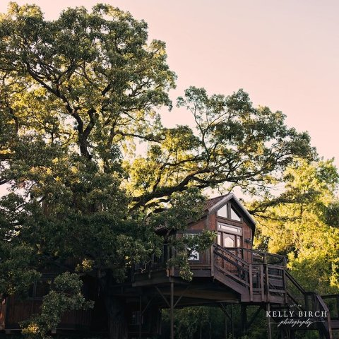 As low as $96Vrbo Treehouse