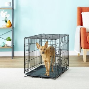 Paws & Pals Double-Door Folding Wire Dog Crate, 24-in - Chewy.com