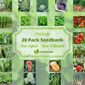 20颗蔬菜/水果/植物种子 混合
