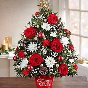 Save 20% OffChristmas Trees, Wreaths and Evergreens @ 1800-flowers.com