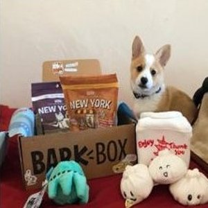 首月仅$5+每月可免费多1个玩具Barkbox 狗狗神秘订阅礼盒 为你家汪汪准备的专属礼物盒