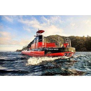 圣卡塔利娜岛潜水艇水下观光之旅