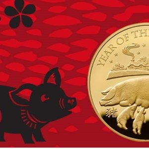 猪年纪念币 1/10盎司纯金上新:The Royal Mint皇家铸币厂 2019年生肖投资币