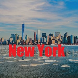 4-Star Hotels at 2-Star PricesNew York Hotel Collection