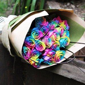 Rainbow Roses 彩虹玫瑰花