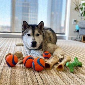 低至5折 $1.49起限今天:Chewy 多款宠物玩具、猫抓板促销