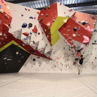 线上6.7折+首单立享额外8折室内攀岩 家庭、情侣出行好去处 肌肉流畅不夸张