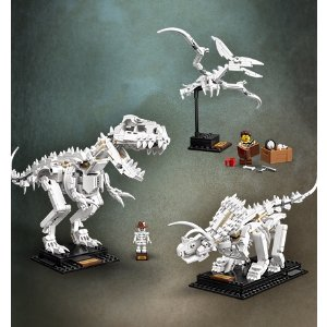 恐龙化石 21320 | Ideas系列