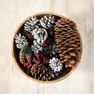 get it now! Grand Pine Cone Potpourri