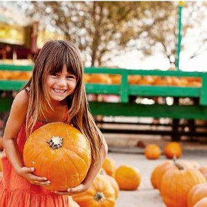 Up to 70% OffGroupon Pumpkin Patch