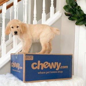 叠加礼卡折上折Chewy 官网年度大促 宠物用品低至6折 好价入冻干